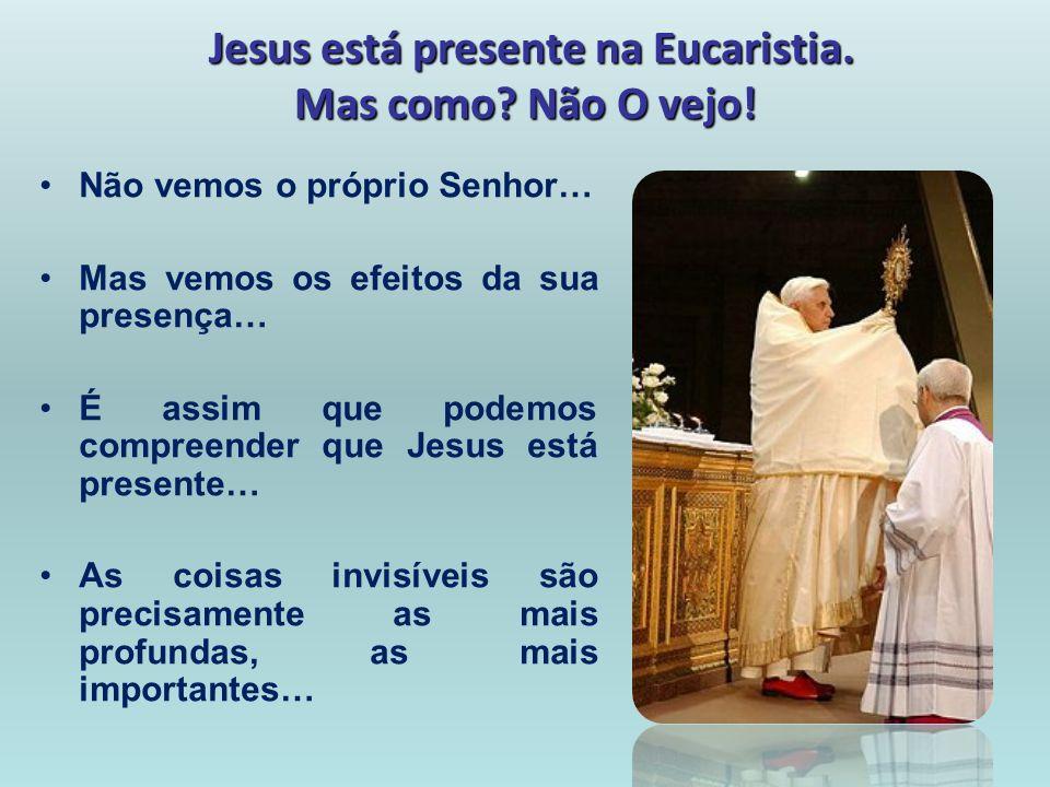 Jesus está presente na Eucaristia. Mas como? Não O vejo! Não vemos o próprio Senhor… Mas vemos os efeitos da sua presença… É assim que podemos compree