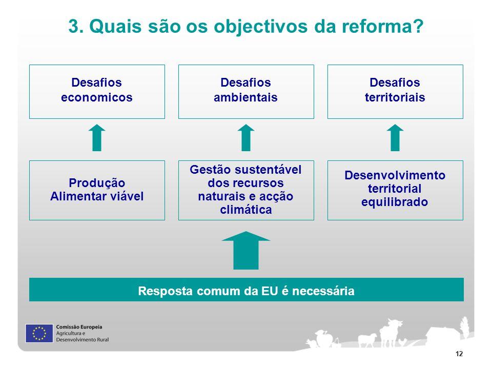 12 3. Quais são os objectivos da reforma? Produção Alimentar viável Gestão sustentável dos recursos naturais e acção climática Desenvolvimento territo