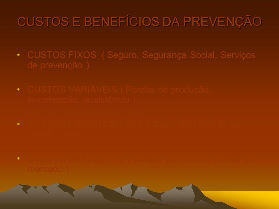 CUSTOS E BENEFÍCIOS DA PREVENÇÃO CUSTOS FIXOS ( Seguro, Segurança Social, Serviços de prevenção ) CUSTOS VARIÁVEIS ( Perdas de produção, investigação,