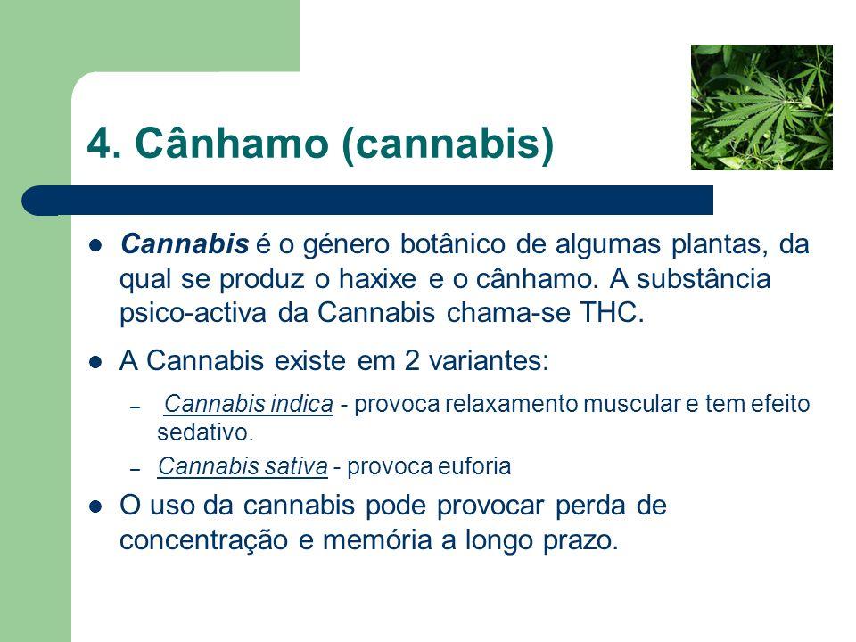 4. Cânhamo (cannabis) Cannabis é o género botânico de algumas plantas, da qual se produz o haxixe e o cânhamo. A substância psico-activa da Cannabis c