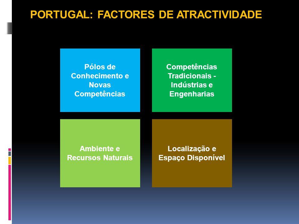 Pólos de Conhecimento e Novas Competências Competências Tradicionais - Indústrias e Engenharias Localização e Espaço Disponível Ambiente e Recursos Na