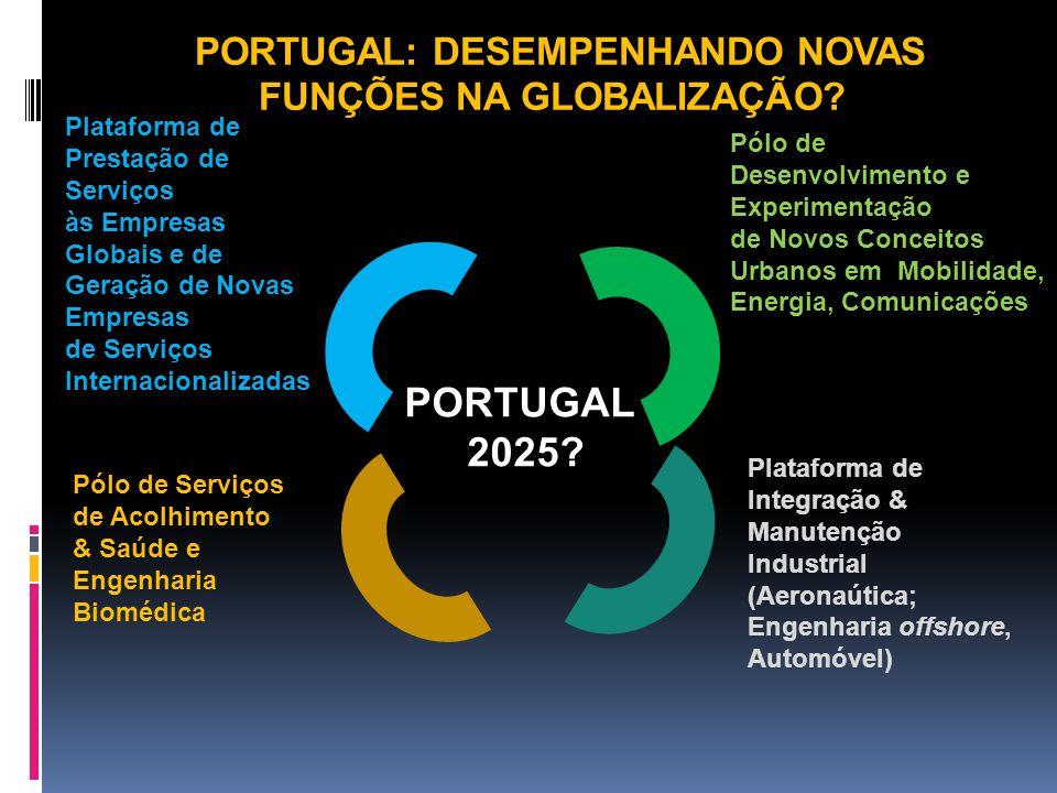 Plataforma de Integração & Manutenção Industrial (Aeronaútica; Engenharia offshore, Automóvel) Pólo de Desenvolvimento e Experimentação de Novos Conce