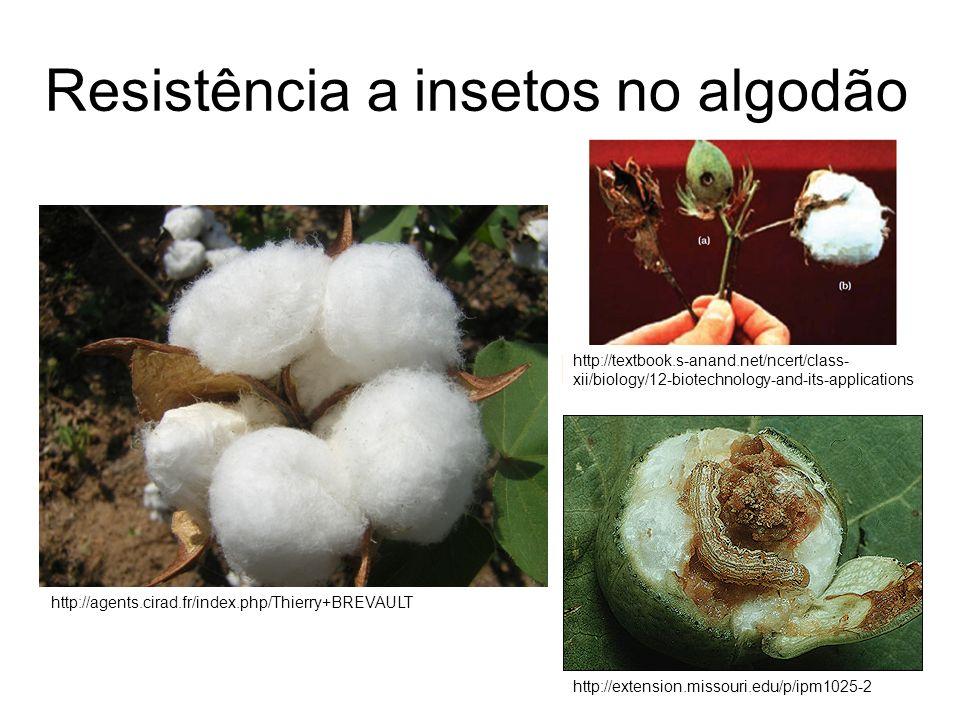 Resistência a insetos no algodão http://agents.cirad.fr/index.php/Thierry+BREVAULT http://extension.missouri.edu/p/ipm1025-2 http://textbook.s-anand.n