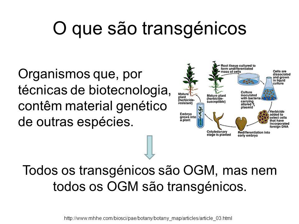 O que são transgénicos Organismos que, por técnicas de biotecnologia, contêm material genético de outras espécies. Todos os transgénicos são OGM, mas