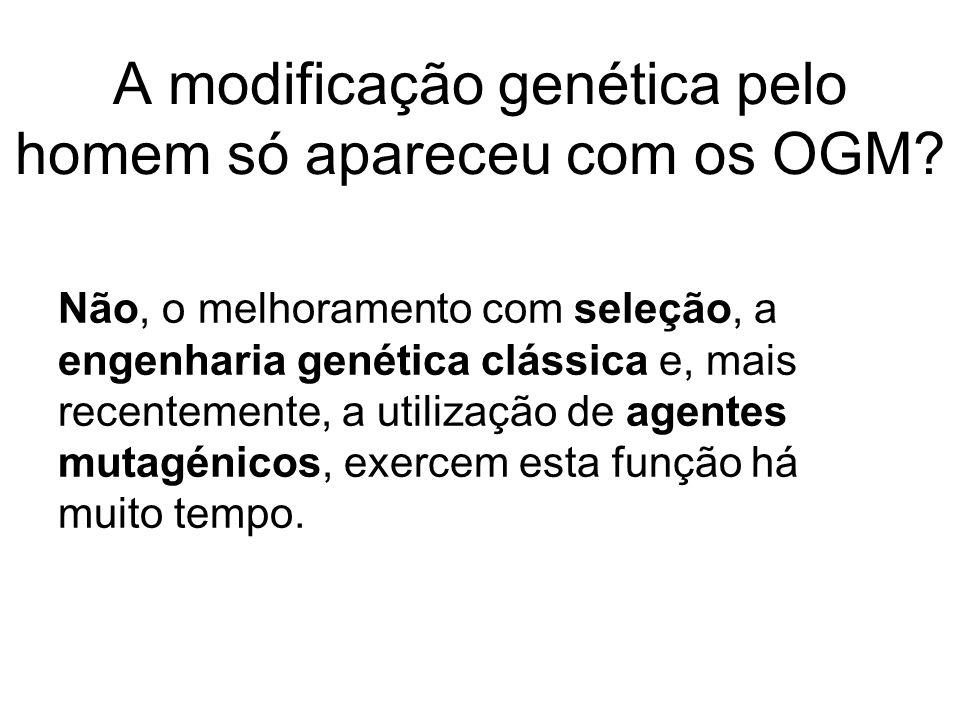 A modificação genética pelo homem só apareceu com os OGM? Não, o melhoramento com seleção, a engenharia genética clássica e, mais recentemente, a util