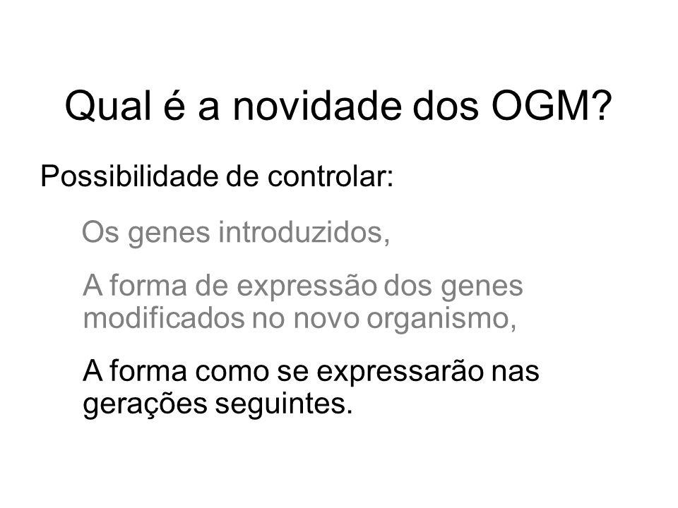 Qual é a novidade dos OGM? Possibilidade de controlar: Os genes introduzidos, A forma de expressão dos genes modificados no novo organismo, A forma co