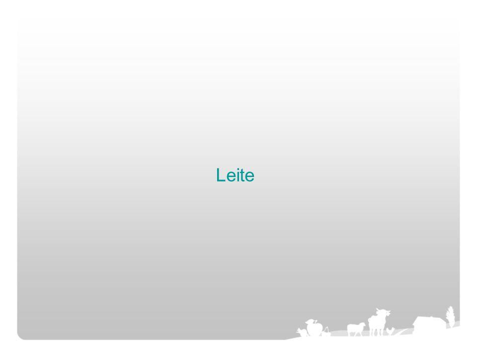 Leite
