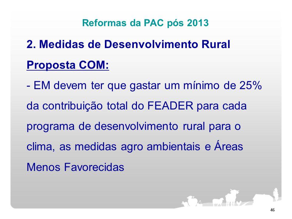 46 Reformas da PAC pós 2013 2. Medidas de Desenvolvimento Rural Proposta COM: - EM devem ter que gastar um mínimo de 25% da contribuição total do FEAD