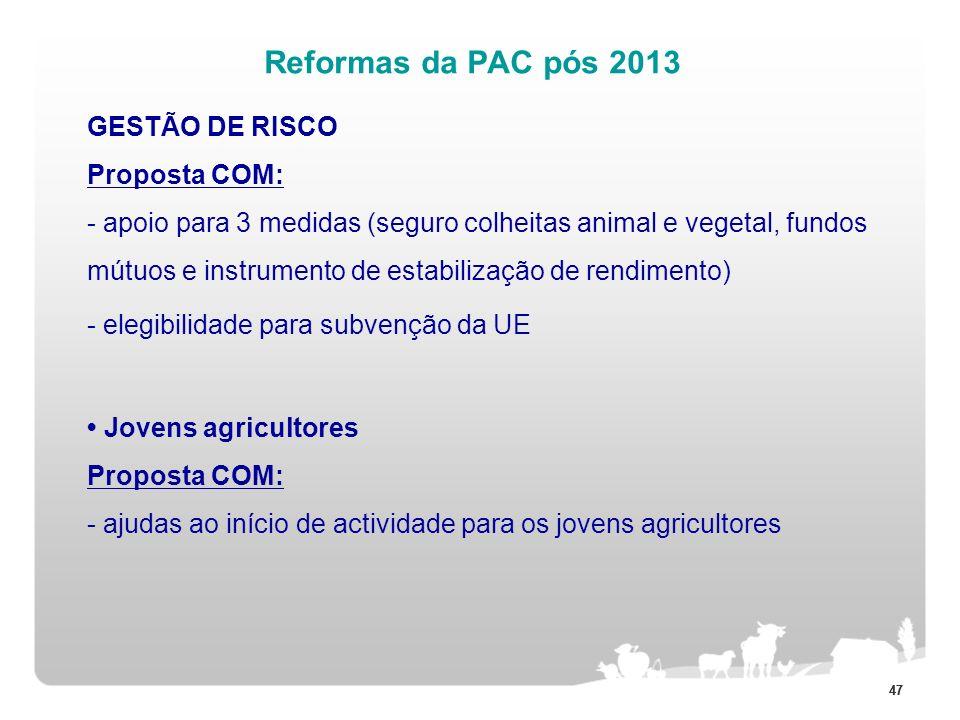 47 Reformas da PAC pós 2013 GESTÃO DE RISCO Proposta COM: - apoio para 3 medidas (seguro colheitas animal e vegetal, fundos mútuos e instrumento de es