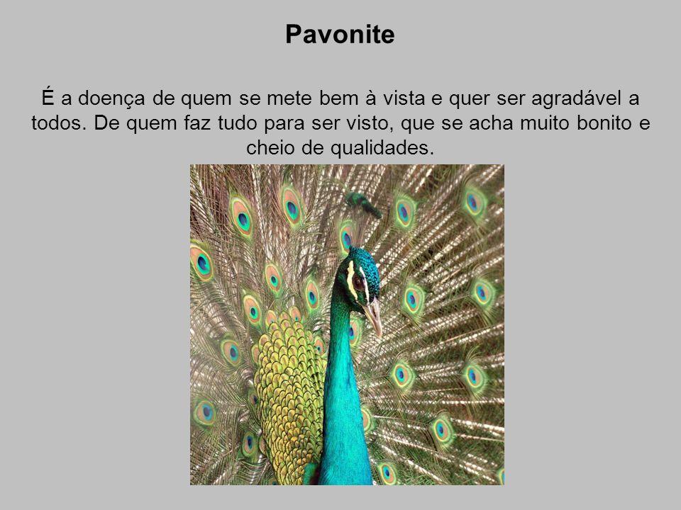 Pavonite É a doença de quem se mete bem à vista e quer ser agradável a todos. De quem faz tudo para ser visto, que se acha muito bonito e cheio de qua