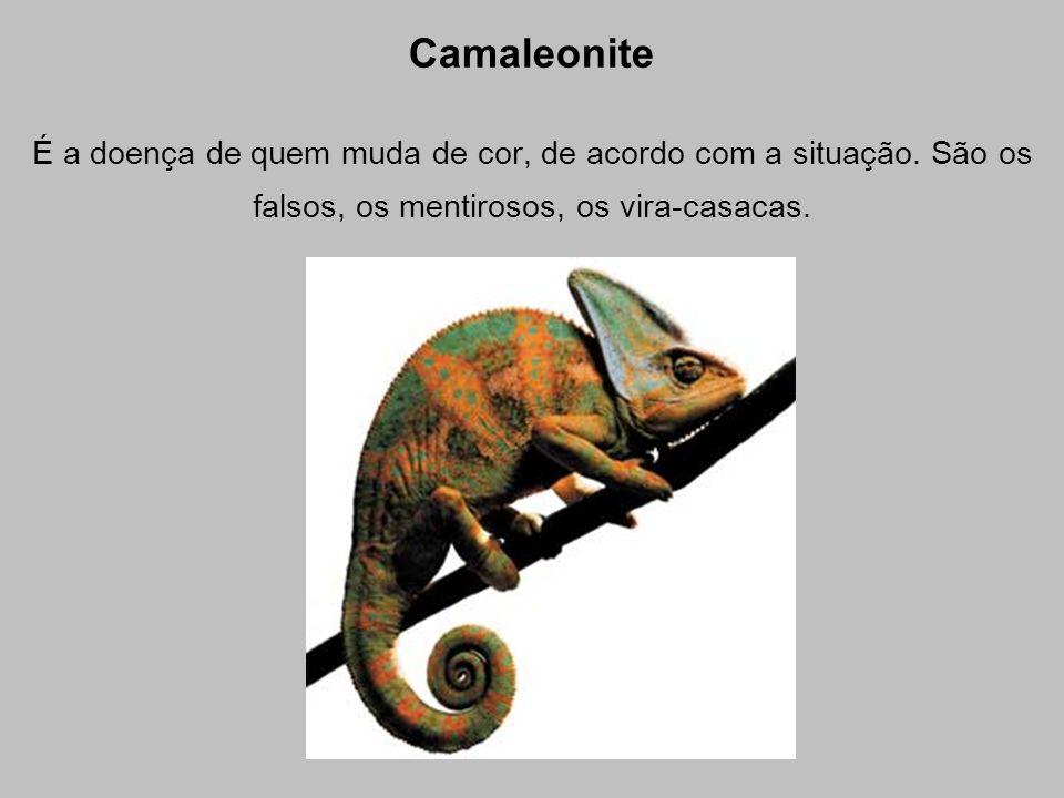Camaleonite É a doença de quem muda de cor, de acordo com a situação. São os falsos, os mentirosos, os vira-casacas.