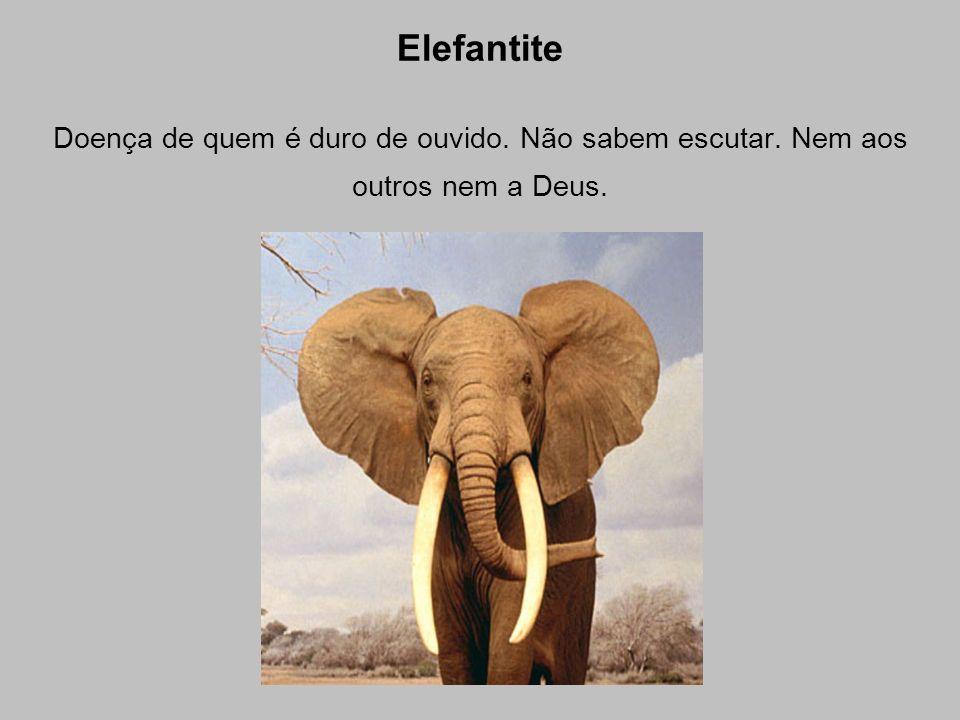 Elefantite Doença de quem é duro de ouvido. Não sabem escutar. Nem aos outros nem a Deus.