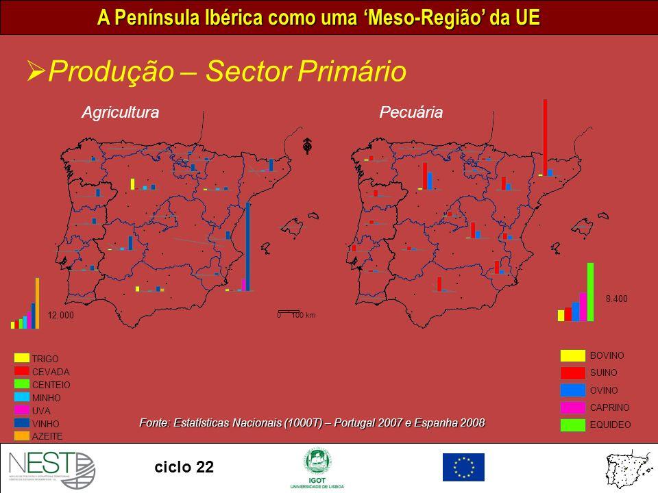 A Península Ibérica como uma Meso-Região da UE ciclo 22 Produção – Sector Primário 0 100 km Pecuária 8.400 BOVINO SUINO OVINO CAPRINO EQUIDEO Agricultura 12.000 TRIGO CEVADA CENTEIO MINHO UVA VINHO AZEITE Fonte: Estatísticas Nacionais (1000T) – Portugal 2007 e Espanha 2008