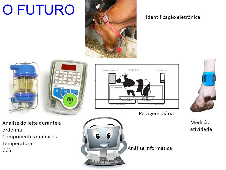 O FUTURO Análise do leite durante a ordenha Componentes químicos Temperatura CCS Identificação eletrónica Pesagem diária Medição atividade Análise inf
