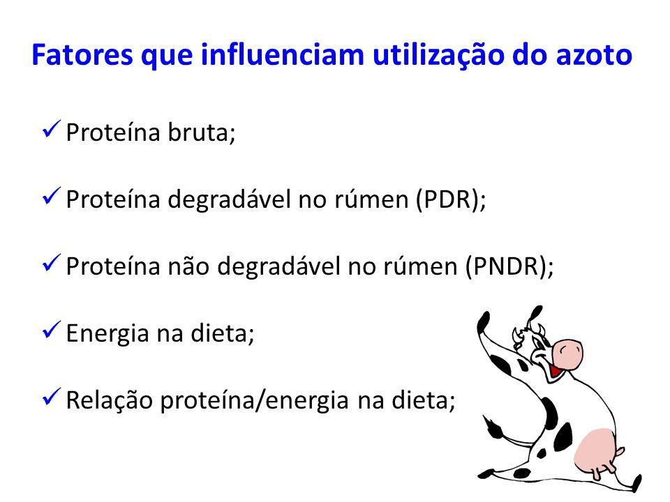 Fatores que influenciam utilização do azoto Proteína bruta; Proteína degradável no rúmen (PDR); Proteína não degradável no rúmen (PNDR); Energia na di