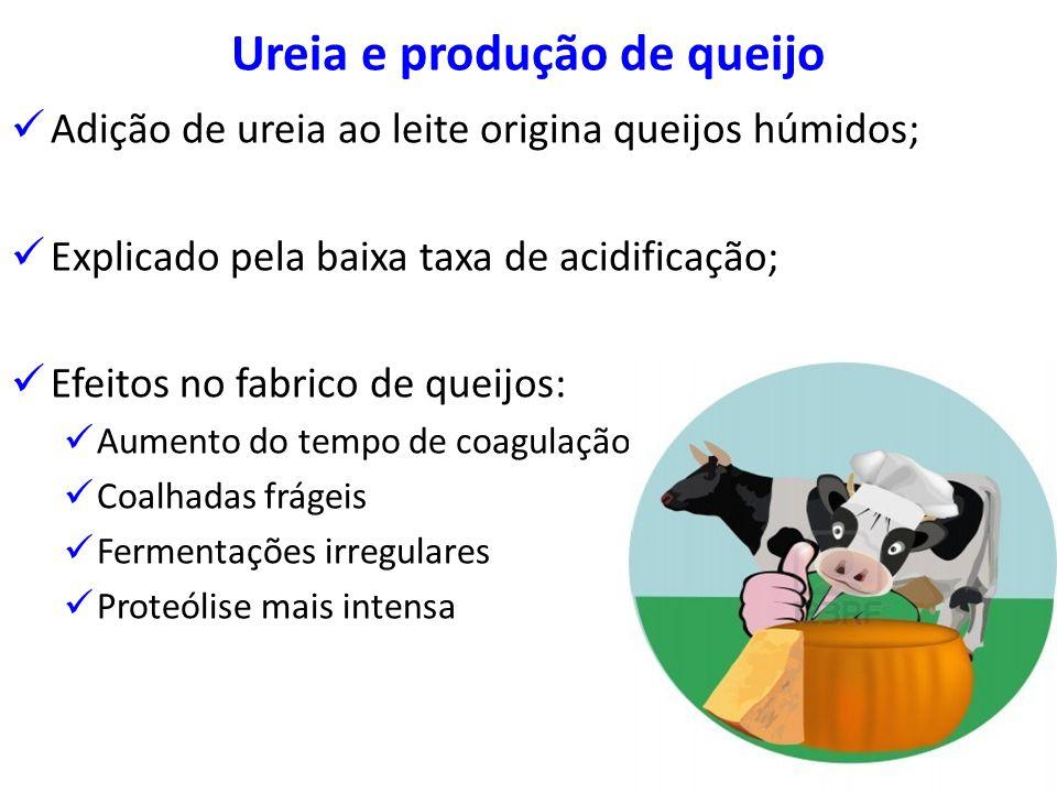 Ureia e produção de queijo Adição de ureia ao leite origina queijos húmidos; Explicado pela baixa taxa de acidificação; Efeitos no fabrico de queijos: