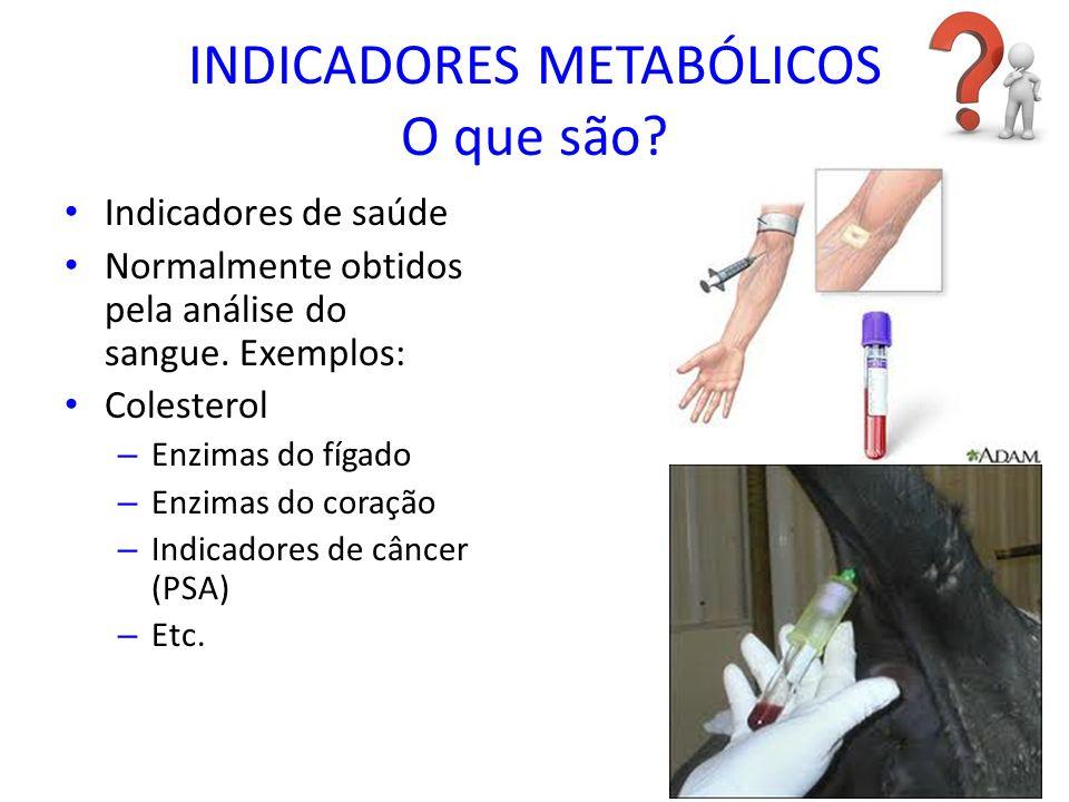 INDICADORES METABÓLICOS O que são? Indicadores de saúde Normalmente obtidos pela análise do sangue. Exemplos: Colesterol – Enzimas do fígado – Enzimas