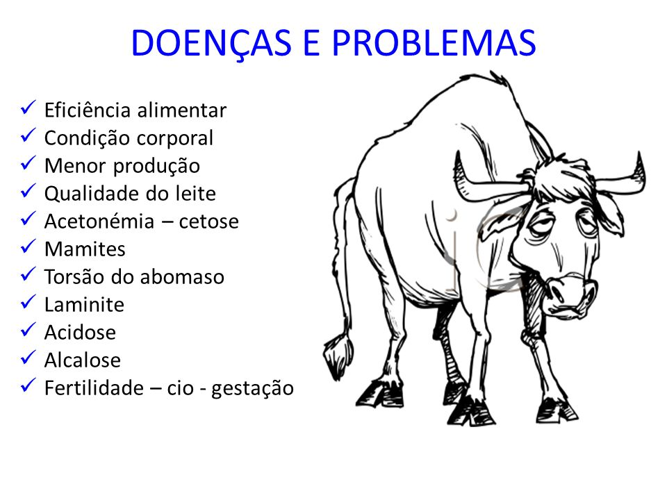 DOENÇAS E PROBLEMAS Eficiência alimentar Condição corporal Menor produção Qualidade do leite Acetonémia – cetose Mamites Torsão do abomaso Laminite Ac