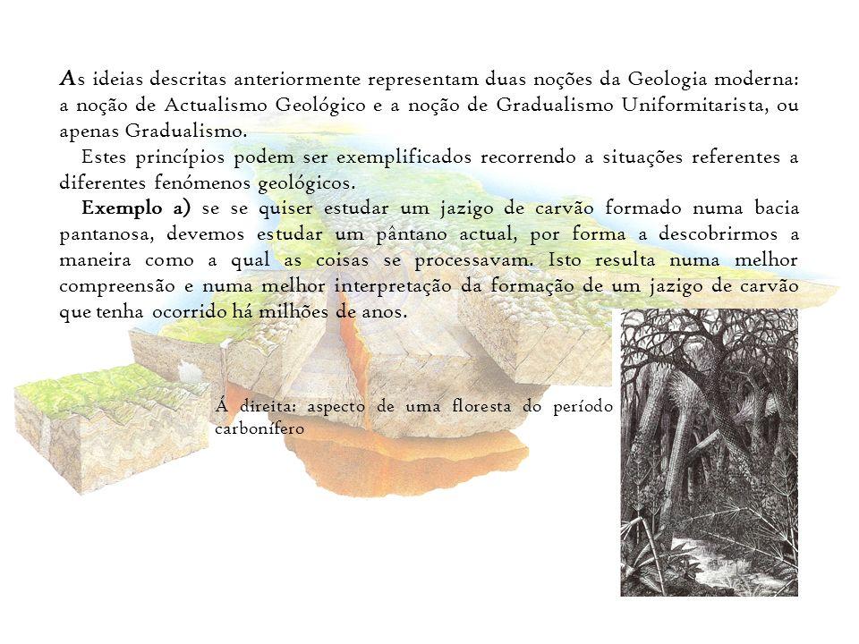 Exemplo b) – ao analisar-se fosseis de camadas sedimentares, onde ocorre um jazigo de carvão, verifica-se que se trata de fosseis aparentados com plantas actuais, que se caracterizam por ocuparem um habitat tropical.