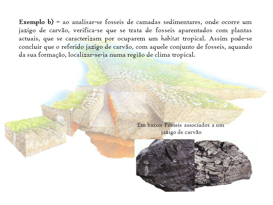 Exemplo b) – ao analisar-se fosseis de camadas sedimentares, onde ocorre um jazigo de carvão, verifica-se que se trata de fosseis aparentados com plan