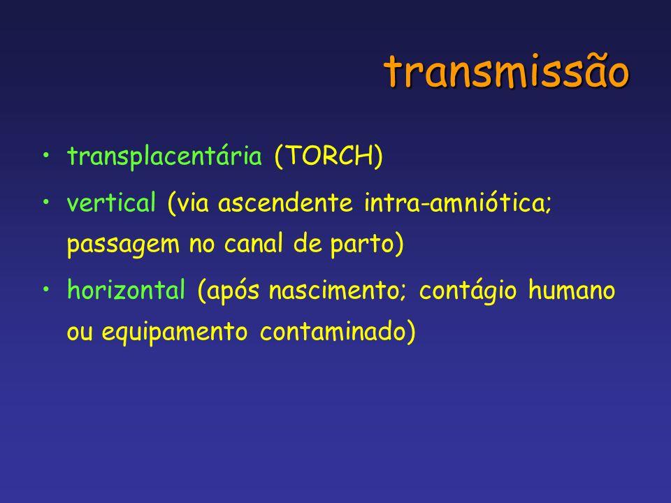 transmissão transplacentária (TORCH) vertical (via ascendente intra-amniótica; passagem no canal de parto) horizontal (após nascimento; contágio human