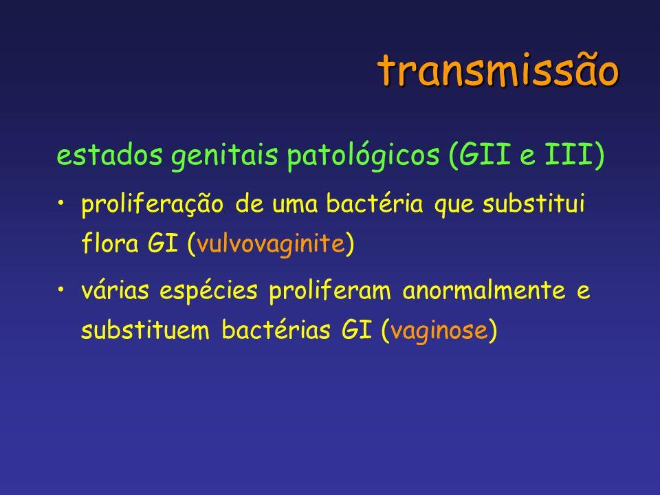 transmissão estados genitais patológicos (GII e III) proliferação de uma bactéria que substitui flora GI (vulvovaginite) várias espécies proliferam an