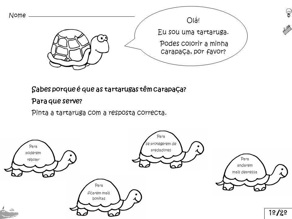 Olá! Eu sou uma tartaruga. Podes colorir a minha carapaça, por favor? Sabes porque é que as tartarugas têm carapaça? Para que serve? Pinta a tartaruga