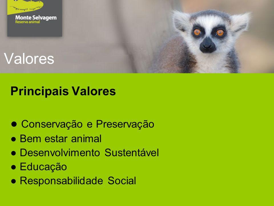 Valores Principais Valores Conservação e Preservação Bem estar animal Desenvolvimento Sustentável Educação Responsabilidade Social