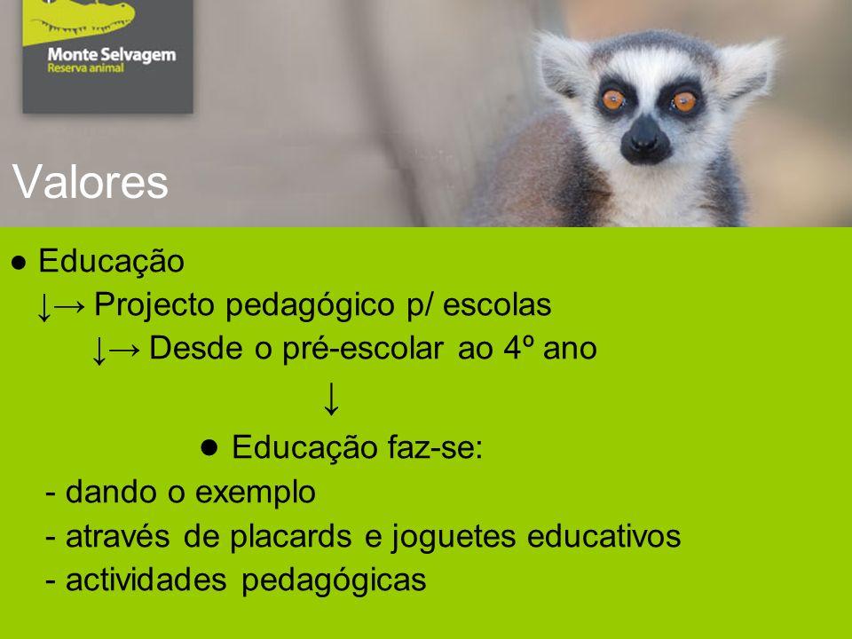 Valores Educação Projecto pedagógico p/ escolas Desde o pré-escolar ao 4º ano Educação faz-se: - dando o exemplo - através de placards e joguetes educativos - actividades pedagógicas