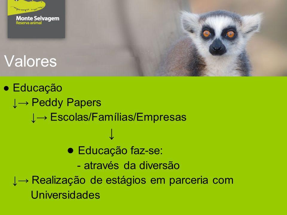 Valores Educação Peddy Papers Escolas/Famílias/Empresas Educação faz-se: - através da diversão Realização de estágios em parceria com Universidades