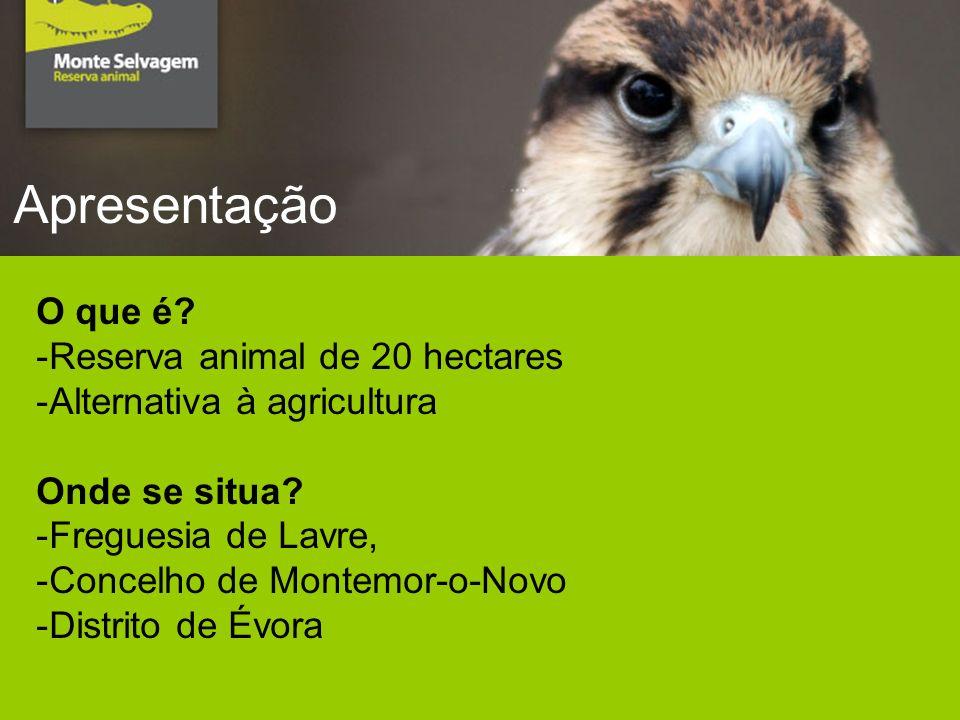 Apresentação O que é. -Reserva animal de 20 hectares -Alternativa à agricultura Onde se situa.