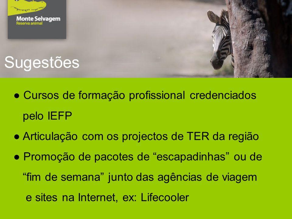 Sugestões Cursos de formação profissional credenciados pelo IEFP Articulação com os projectos de TER da região Promoção de pacotes de escapadinhas ou de fim de semana junto das agências de viagem e sites na Internet, ex: Lifecooler