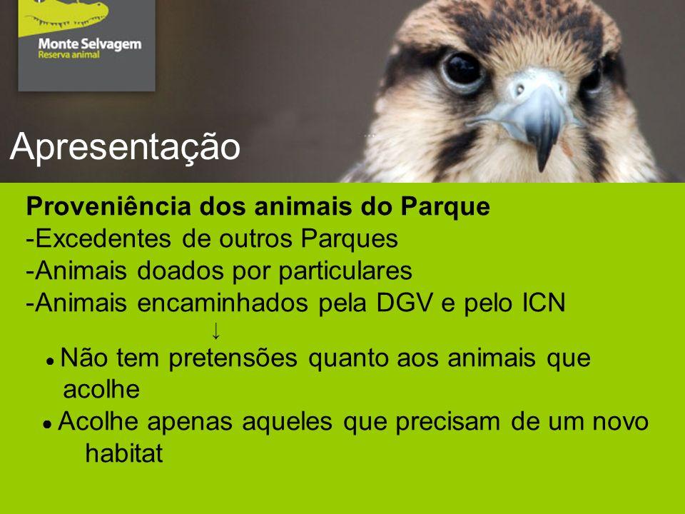 Apresentação Proveniência dos animais do Parque -Excedentes de outros Parques -Animais doados por particulares -Animais encaminhados pela DGV e pelo ICN Não tem pretensões quanto aos animais que acolhe Acolhe apenas aqueles que precisam de um novo habitat