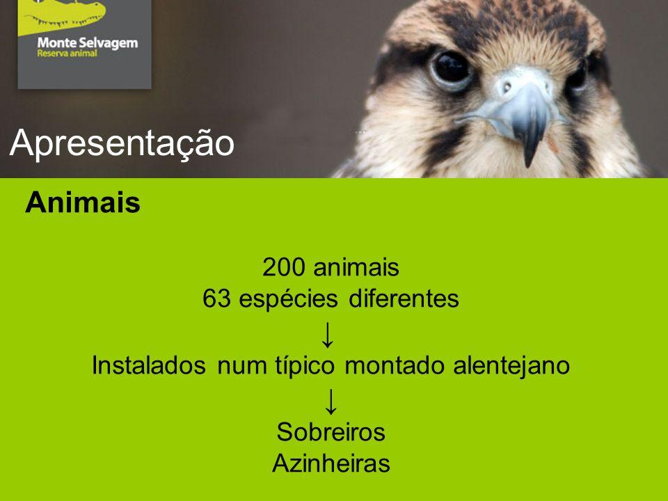 Apresentação Animais 200 animais 63 espécies diferentes Instalados num típico montado alentejano Sobreiros Azinheiras