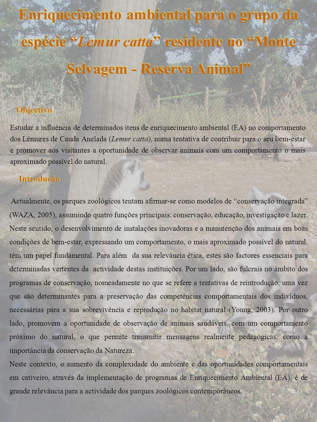 Enriquecimento ambiental para o grupo da espécie Lemur catta residente no Monte Selvagem - Reserva Animal Estudar a influência de determinados itens d
