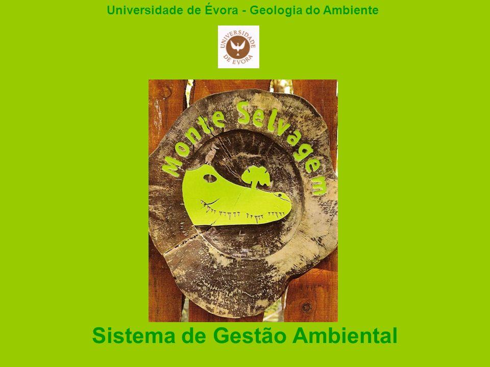 Sistema de Gestão Ambiental Universidade de Évora - Geologia do Ambiente