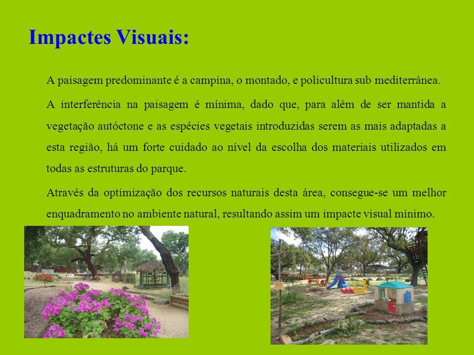 Impactes Visuais: A paisagem predominante é a campina, o montado, e policultura sub mediterrânea. A interferência na paisagem é mínima, dado que, para