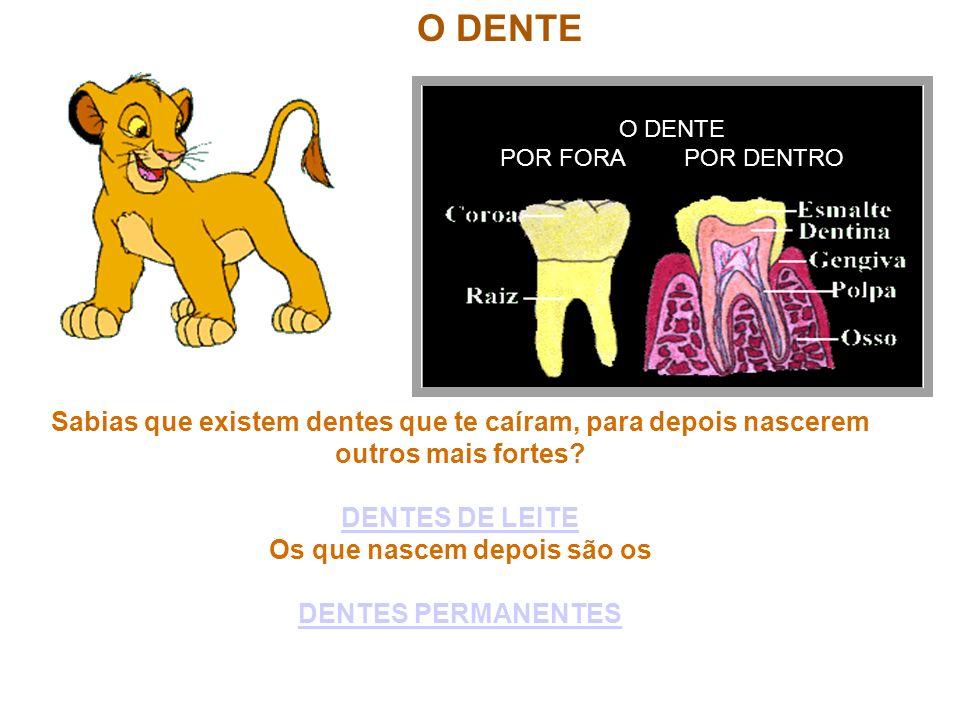 O DENTE O DENTE POR FORA POR DENTRO Sabias que existem dentes que te caíram, para depois nascerem outros mais fortes? DENTES DE LEITE Os que nascem de