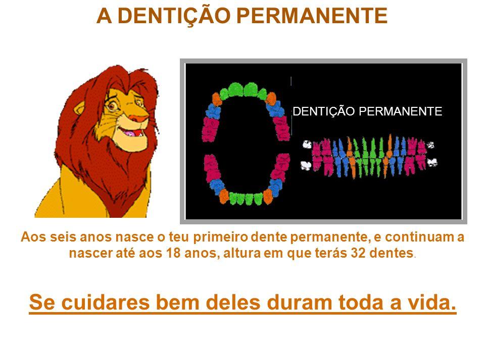 A DENTIÇÃO PERMANENTE DENTIÇÃO PERMANENTE Aos seis anos nasce o teu primeiro dente permanente, e continuam a nascer até aos 18 anos, altura em que ter