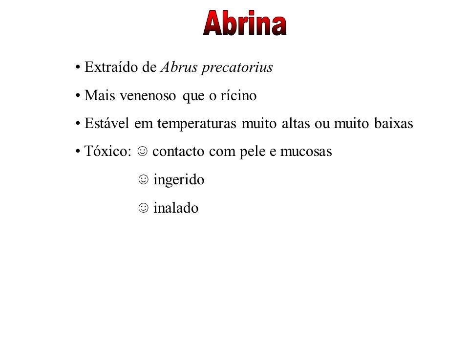 Extraído de Abrus precatorius Mais venenoso que o rícino Estável em temperaturas muito altas ou muito baixas Tóxico: contacto com pele e mucosas inger