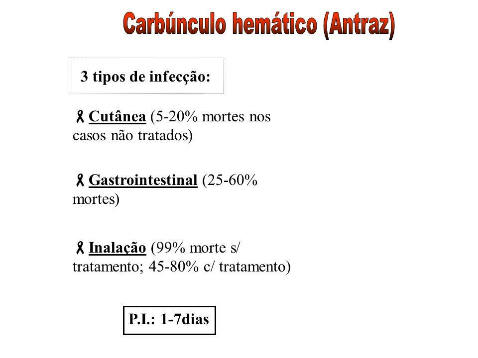 3 tipos de infecção: Cutânea (5-20% mortes nos casos não tratados) Gastrointestinal (25-60% mortes) Inalação (99% morte s/ tratamento; 45-80% c/ trata