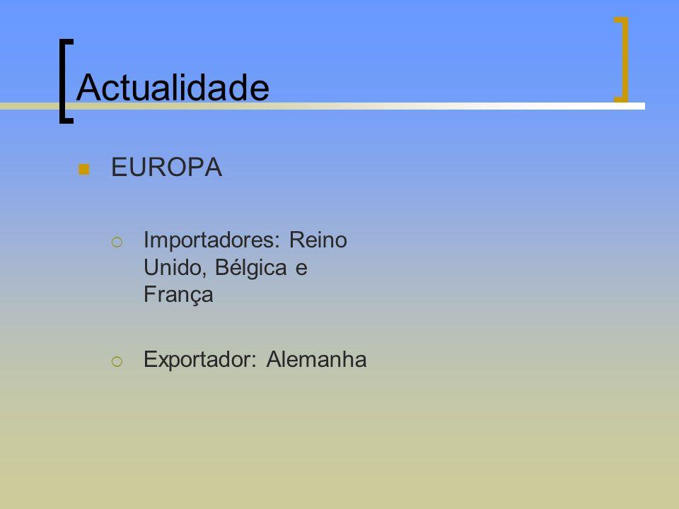 Actualidade EUROPA Importadores: Reino Unido, Bélgica e França Exportador: Alemanha
