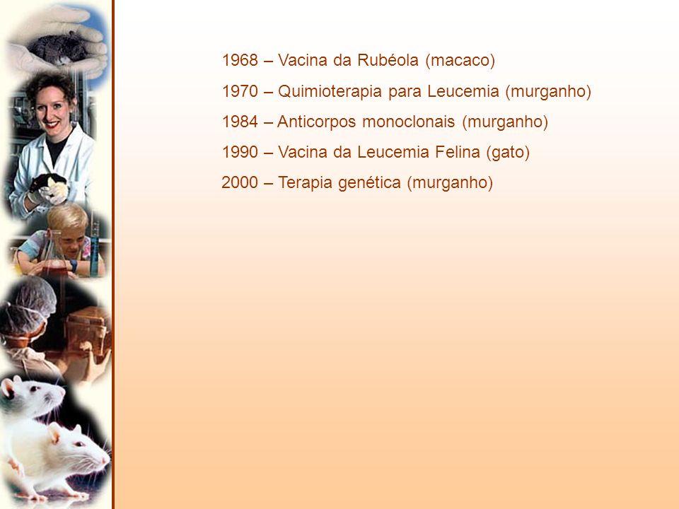 1968 – Vacina da Rubéola (macaco) 1970 – Quimioterapia para Leucemia (murganho) 1984 – Anticorpos monoclonais (murganho) 1990 – Vacina da Leucemia Fel