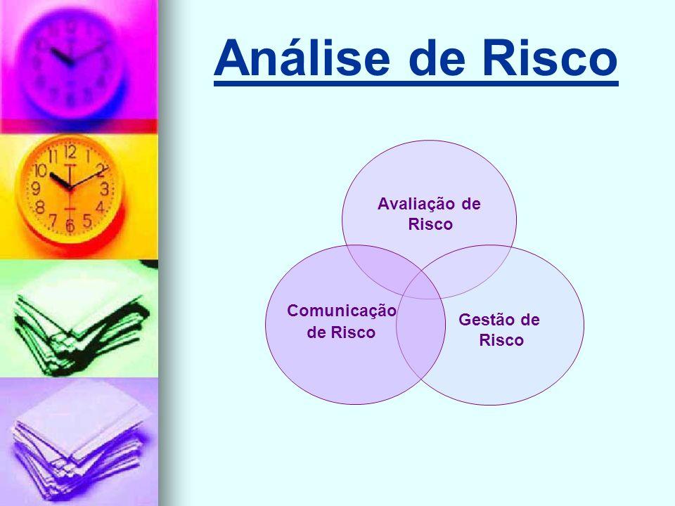 Análise de Risco Avaliação de Risco Gestão de Risco Comunicação de Risco