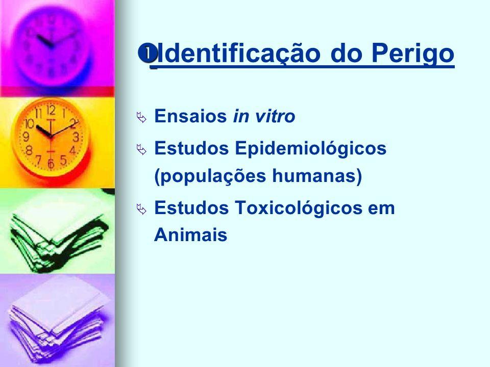 Identificação do Perigo Ensaios in vitro Estudos Epidemiológicos (populações humanas) Estudos Toxicológicos em Animais