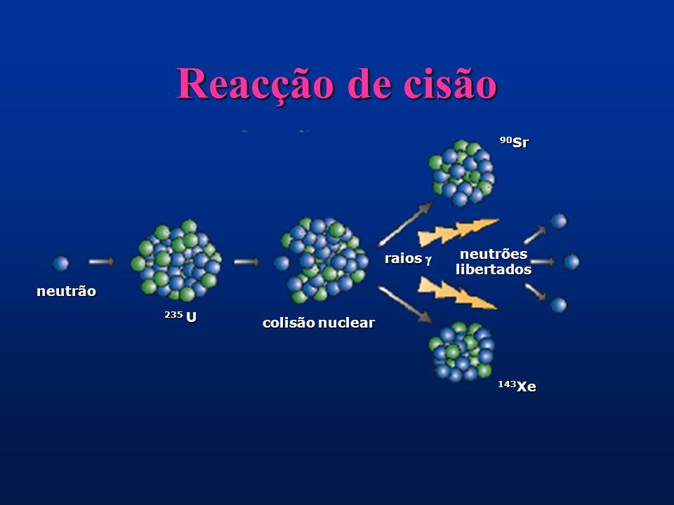 neutrão 235 U colisão nuclear raios raios neutrões libertados 90 Sr 143 Xe Reacção de cisão