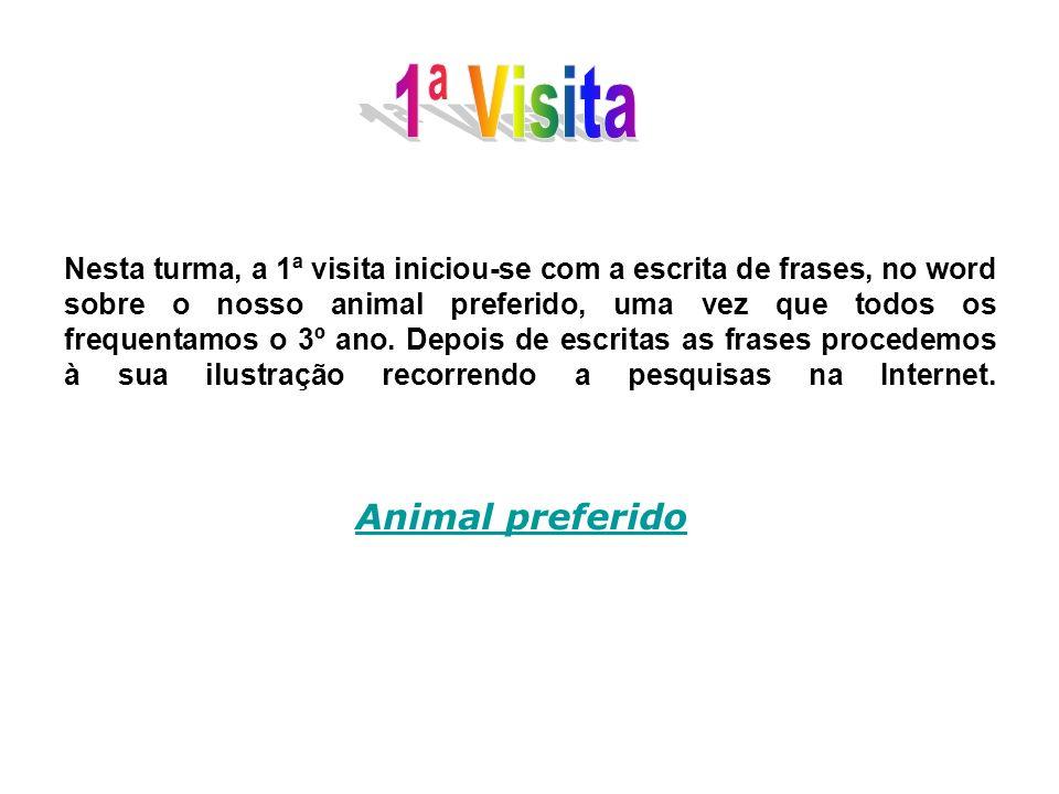 Nesta turma, a 1ª visita iniciou-se com a escrita de frases, no word sobre o nosso animal preferido, uma vez que todos os frequentamos o 3º ano. Depoi
