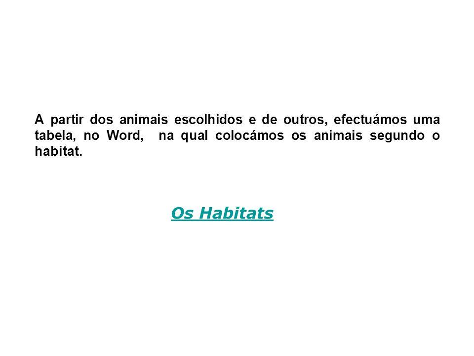 A partir dos animais escolhidos e de outros, efectuámos uma tabela, no Word, na qual colocámos os animais segundo o habitat. Os Habitats