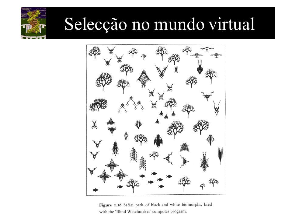 Selecção no mundo virtual
