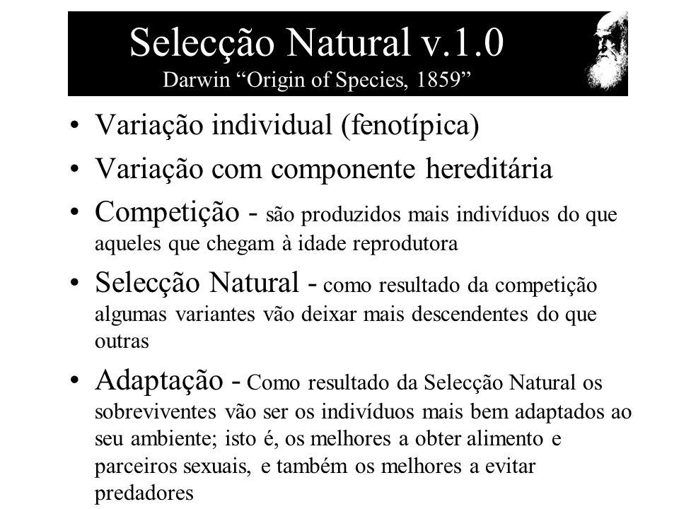Selecção Natural v.1.0 Darwin Origin of Species, 1859 Variação individual (fenotípica) Variação com componente hereditária Competição - são produzidos